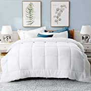 Cooldex All Season Queen Size Soft Comforter - Reversible Down Alternative Quilted Comforter Fluffy Winter Warm Ultra Duvet Insert Set (Queen 88 x 88 Inches, White)