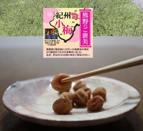 無農薬 小梅 白干し 500g 熊野のご褒美 和歌山産 無添加 無化学肥料 梅干し