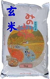 福島県産 玄米 石抜き処理済 チヨニシキ 5kg 平成30年産