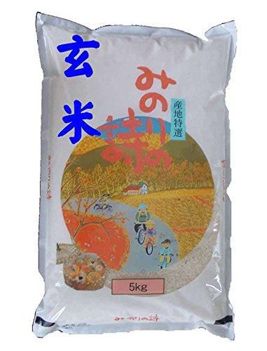 福島県産 玄米 石抜き処理済 チヨニシキ 5kg 令和2年産
