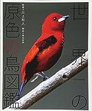 世界の原色の鳥図鑑