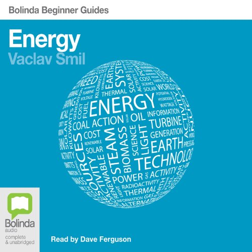 Energy: Bolinda Beginner Guides cover art