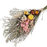 XHXSTORE Flores Secas Naturales Rosas Ramo Flores Gypsophila y Margarita para 0ficina Arreglo Floral Fotografía Boda Florero