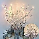 YLLN Christmas 20LEDs Branch Lamp Light Wedding Party Tree Decoración para el hogar Tienda Jarrón de café Color cálido