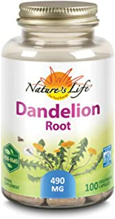 Zand Dandelion Root Mineral Supplements | 100 Count