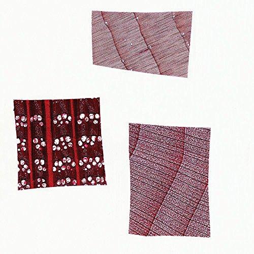 Wood Types Comparison Microscope Slides