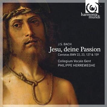 J.S. Bach: Jesu, deine Passion