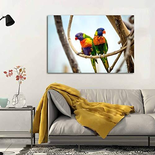 yaoxingfu Kein Rahmen Poster Und Drucke Leinwand ng Bunte Papageien Vögel Bilder Dekorative ng Wandkunst Für Wohnzimmer 40x60 cm