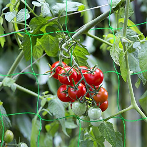 BED COTTON Red De Enrejado De Plantas, Trellis Red De Jardí