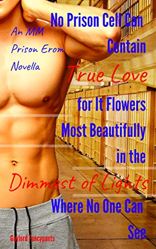 No Prison Cell Can Contain True Love for It Flowers Most Beautifully in the Dimmest of Lights Where No One Can See It: An MM Prison Erom Novella (Convicts ... Radiators Book 1) (English Edition)