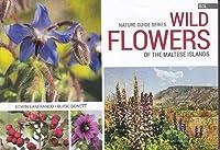 Wild Flowers of the Maltese Islands