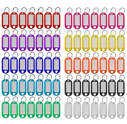 Plastic Key Tags 220 Pcs, 10 Colors Key Tags with Split Ring Label Window, Key ID Tags for Name Tag, Key Chain Tag, Luggage Tags