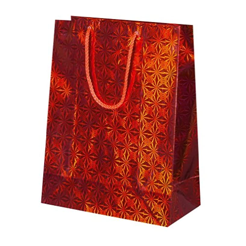 Susy Card 11274917 Gift Bag with Holographic Paper Pack of 10 Red