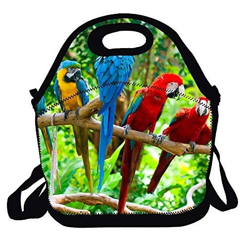 N\A Bolsa de Almuerzo/Mochila/Bolso con Cremallera, asa de Transporte and Correa para el Hombro para Adultos o niños - Tropical Parrots