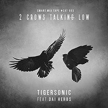 2 Crows Talking Low