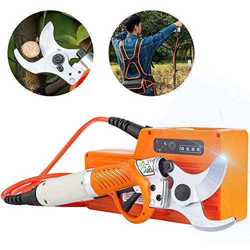 BTASS Elektrische Gartenschere,Akku Astschere,Mit Teleskopstiel   Astschere   Strauchschere Mit Akku   Teleskopschere   Astschneider   Baumschere