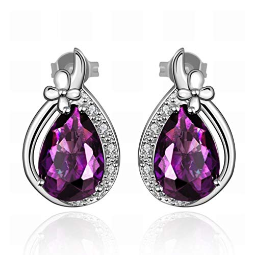 Platinum Fancy Earrings Drops Violet Zircon Ladies Luxury Stud Earrings/Stainless Steel/Anti-allergic/Silver Shine/Diamond/Small and Fine,Colour:Photo Color Bracelets Earrings Rings Necklace