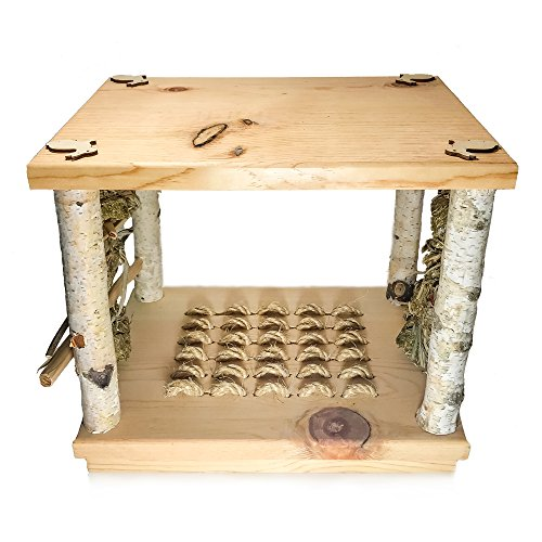 Small Pet Select Wonderland Play Table