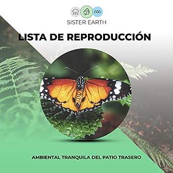 Lista de Reproducción Ambiental Tranquila del Patio Trasero