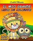 Il mio grande libro da colorare. Libro da colorare per Bambini dai 4-8 Anni: 100 pagine da colorare con animali, dinosauri, unicorni, fate... (Regali per Bambini)
