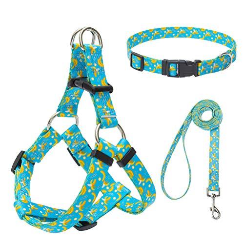 EXPAWLORER Basic Halter Dog Harnesses with Leash and Collar Set, Adjustable Soft Strap with Fashion Banana Design