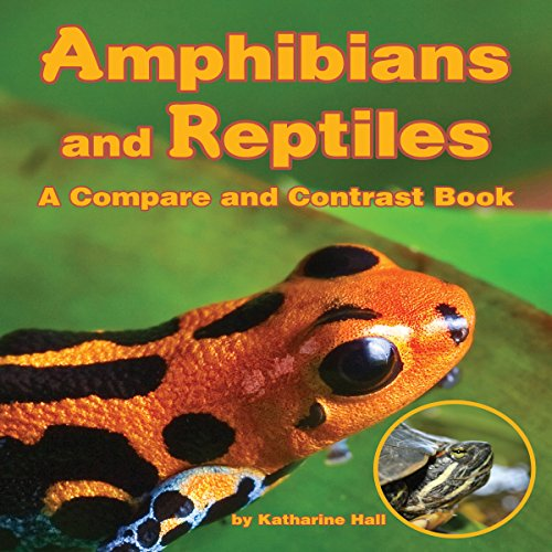 Amphibians and Reptiles cover art