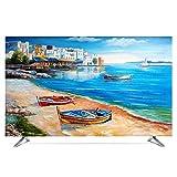 TINGTING Tv Abdeckung LCD-TV-Staubschutzhülle TV Computerdekoration Abdecken Rutschfestes Tuch Monitorabdeckungen (Color : Venice, Size : 40inch)