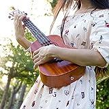 Immagine 2 aklot ukulele da concerto per