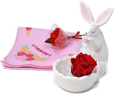 母の日 花 ギフト プリザーブドフラワー バラ ハンカチ 母の日のプレゼント (ウサギ アレンジ 赤バラ ハンカチ カーネーション 3点セット) ラッピング済