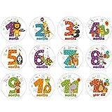 Wenyounge 12 unids/Set Dibujos Animados Animales bebé Pegatinas mensuales fotografía Tarjeta Conmemorativa