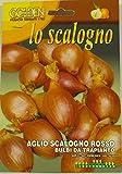 Bulbi da trapianto per la produzione di Cipolle e Aglio in confezione da 250 grammi (Scalogno Rosso)