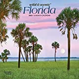 Florida Wild & Scenic 2021 7 x 7 Inch Monthly Mini Wall Calendar, USA United States of America Southeast State Nature