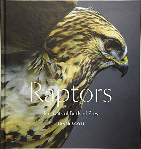 Raptors: Portraits of Birds of Prey (Bird Photography Book)