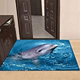 Alfombras azul alfombras dormitorio matrimonio Terciopelo de cristal Sala de estar Fondo de delfín Dormitorio Alfombra de cabecera Alfombra de piso Alfombra de puerta de baño alfombras coloridas 80X12