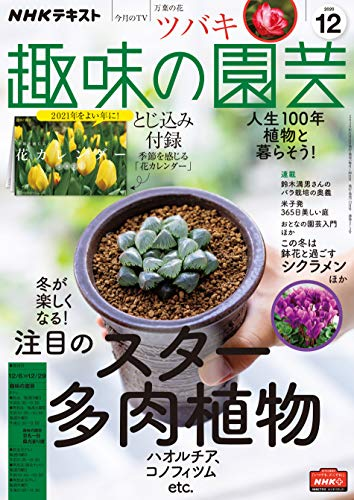 NHK 趣味の園芸 2020年 12月号 [雑誌] (NHKテキスト)