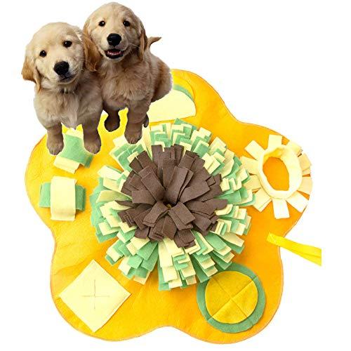 PATIO PLUS Alfombra Olfativa Perros, Grande 60 x 60cm Snuffle Mat para Perros Alfombrilla para Perros, Alimentación de Mascotas, Amarilla