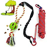 NEECONG Dog-Bungee-Toy Outdoor Dog Toys for Large or Small Dogs,Durable Tugger for Tug-of-War with Chew Rope Toy,Dog Outdoor Bungee Hanging Toy to Solo Play(Green)