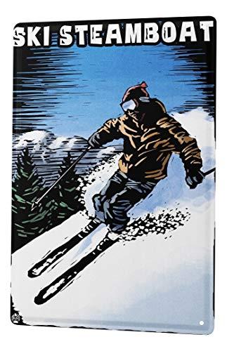 LEotiE SINCE 2004 Plaque en Métal Métallique Poster Mural tin Sign Retro Déco Skieurs