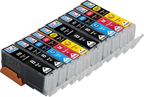 Skia Ink Cartridges Compatible Ink Cartridge Replacement for Canon CLI-251, PGI-250, PGI-250XL, CLI-251XL (Pigment Black / Black / Cyan / Magenta / Yellow / 10 Pack)