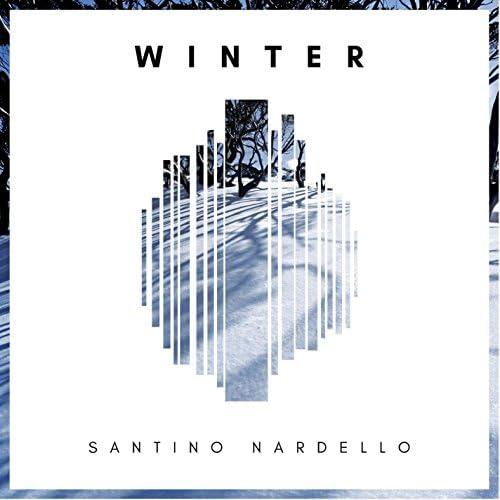 Santino Nardello