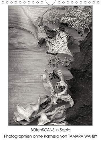 BlütenScans in Sepia, Photographien ohne Kamera von Tamara Wahby (Wandkalender 2021 DIN A4 hoch)