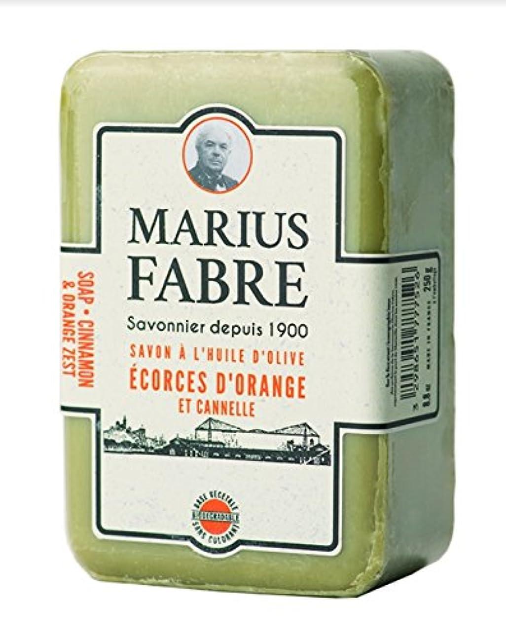 制限する代表する懲戒サボンドマルセイユ 1900 シナモンオレンジ 250g