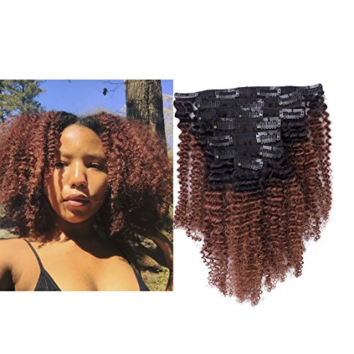 Lacerhair Ombre Clip in Human Hair Extensions 4B 4C Afro Kinky Curly Clip in Highlighted Hair Extensions Clip on 10 inch 100% Real Remy Natural Hair Quality Color #1B/33 AC for Black Women