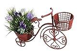 Bicycle Planter Metal Vintage Plant Stand Flower Pot Holder Garden Decor | Believers Corner (Red)