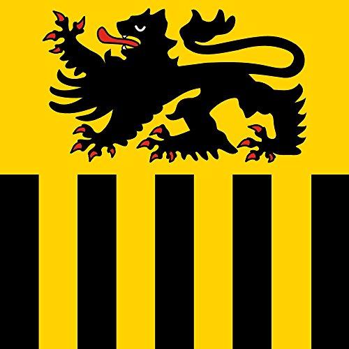 magFlags Drapeau Large Niederzier | Beschreibung der Flagge Das quadratische Flaggentuch geteilt Von Gelb nach Schwarz; Oben EIN schreitender rotbewehrter und -bezungter schwarzer Löwe; unten VI