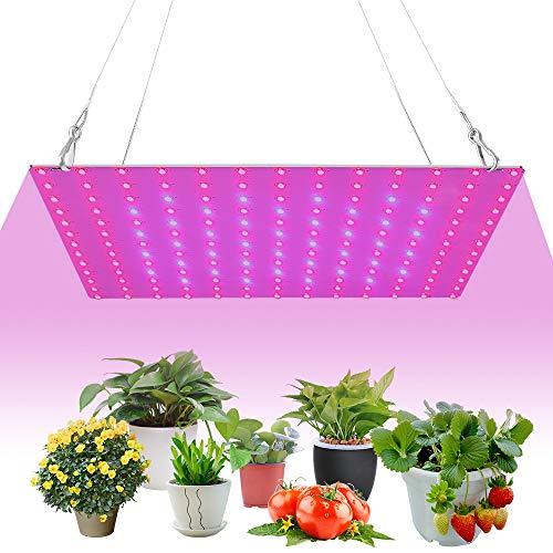 Lámpara LED de crecimiento de plantas de 169 ledes, espectro completo, luz para crecimiento de plantas, con luz roja y azul, para plantas de interior