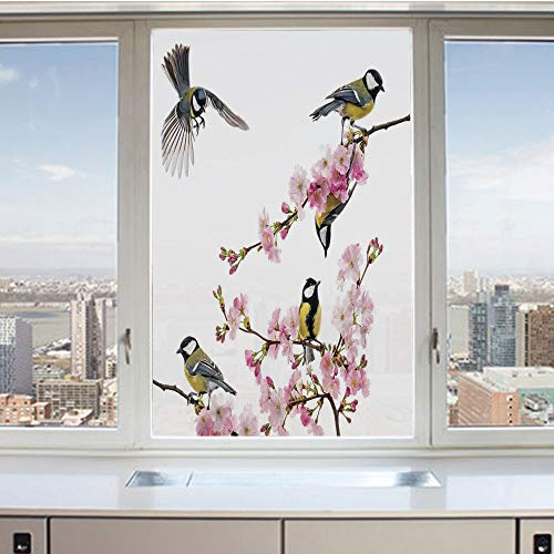 3D Decorative Privacy Window Films,Group of Cute Humming Birds on a Flowering Branch Best Friends Peace Illustration Home,No-Glue Self Static Cling Glass Film for Home Bedroom Bathroom Kitchen Office