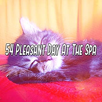54 Pleasant Day At The Spa