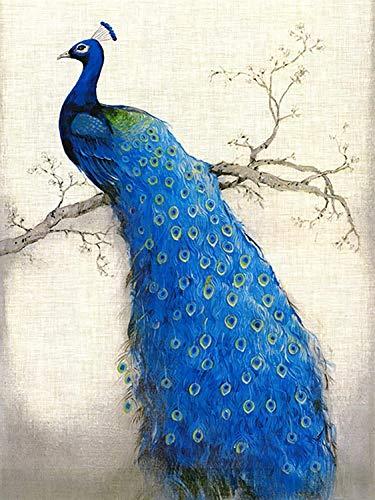 Kits de pintura por números Pavo real azul animal para adultos principiantes y niños estudiantes Kit de pintura al óleo sobre lienzo con juego de pinceles pinturas acrílicas 16 * 20 pulgadas sin