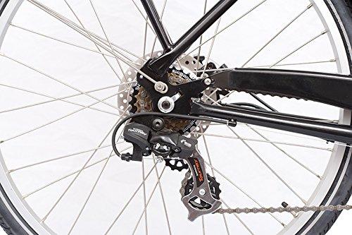 E-Bike Lastenfahrrad Babboe Big E-Power Elektro kaufen  Bild 1*